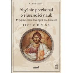 Aby się przekonał o słuszności nauk. Zasłuchani w przypowieści z Ewangelii św. Łukasza Lectio divina